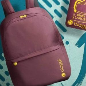 Biaggi standard size packable backpack